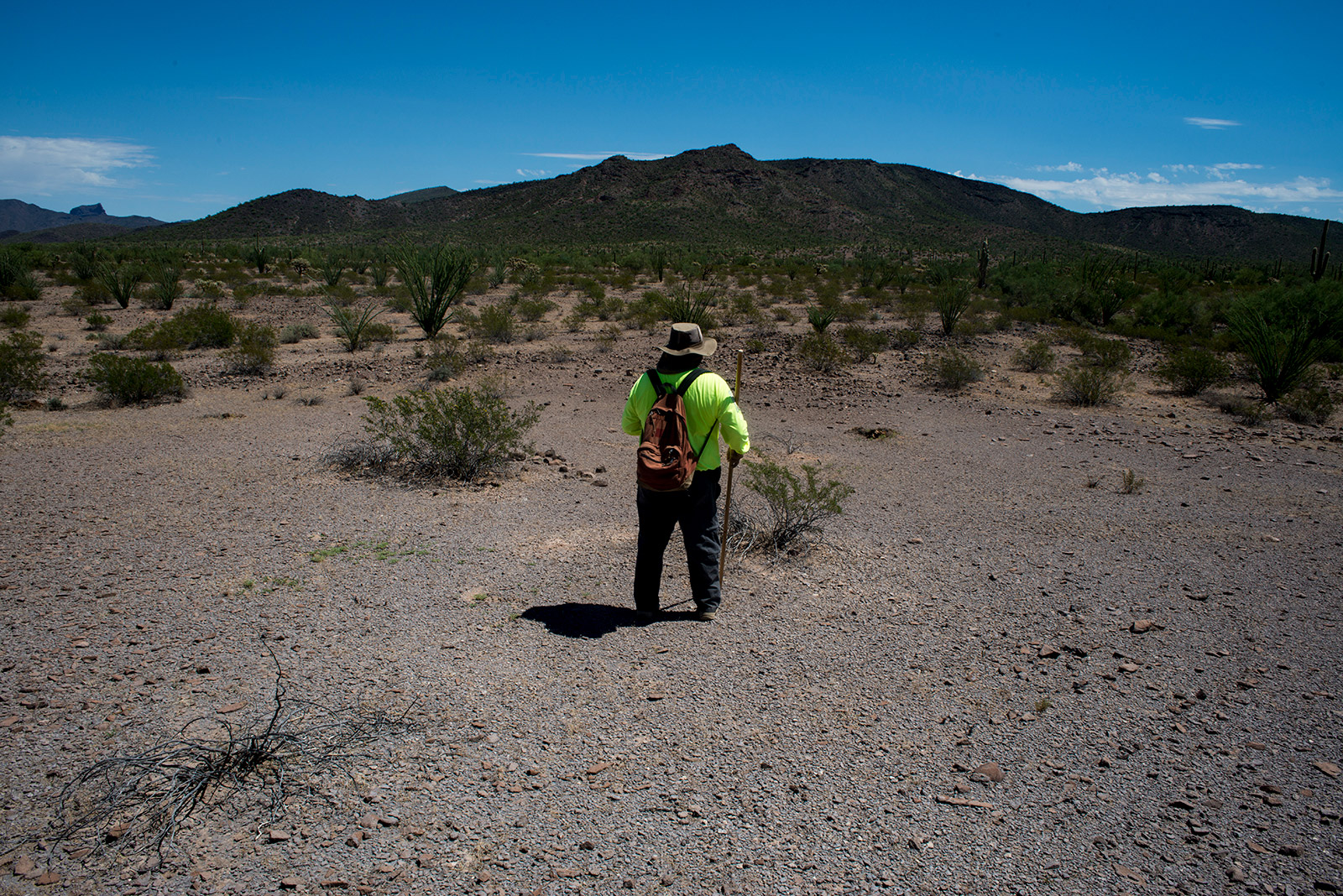 Ely Ortiz, the founder and leader of Aguilas Del Desierto, scans the desert near the U.S.-Mexico border as nearly two dozen volunteers help him search for missing migrants. Ortiz's brother died of dehydration nearby in 2009 while attempting to enter the U.S. illegally, prompting Ortiz to form the volunteer group. <em>(Brandon Quester/inewsource)</em>