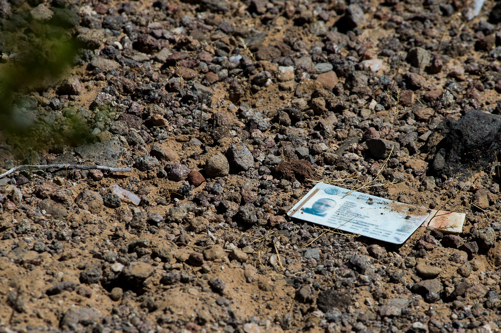 A string of personal items, including this Mexico ID card, leads to a small wash where the body of a missing migrant was discovered. The body had since been removed by local authorities, but the personal items remained in the desert on Aug. 26, 2017. <em>(Brandon Quester/inewsource)</em>
